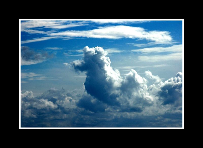 Hypocampe du ciel