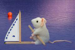 I am sailing ...
