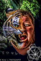 I am Tiger