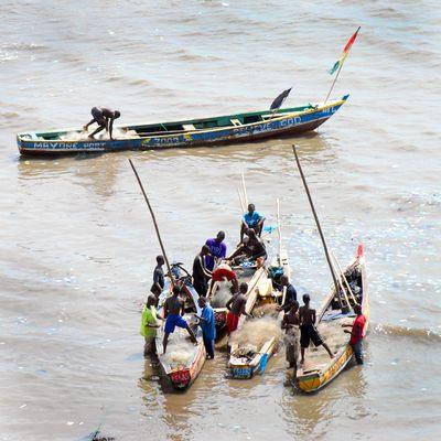 i bambini pescatori