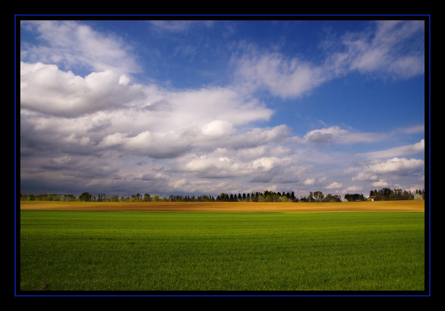 I colori della pianura del piemonte foto immagini - Immagini di tacchini a colori ...