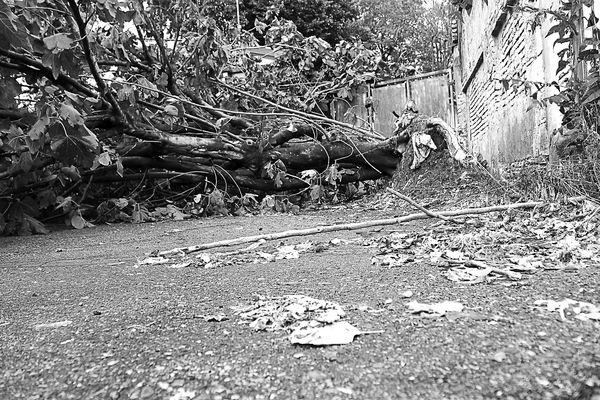 I disastri del tornado