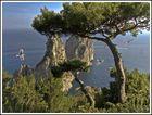 I Faraglioni di Capri.................
