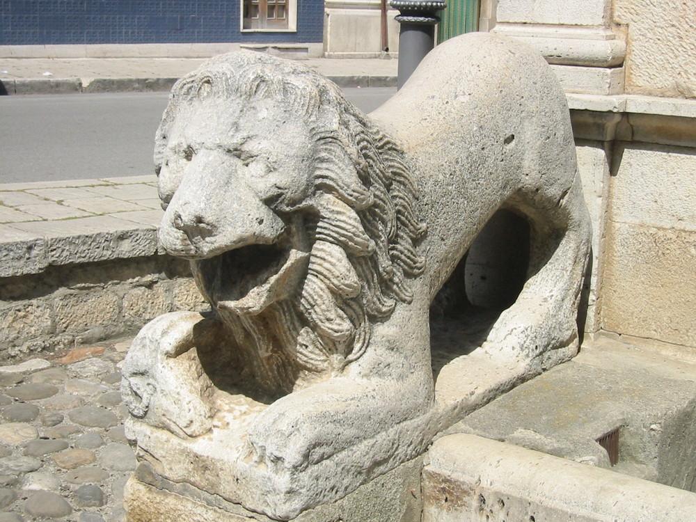 i leoni di Venosa