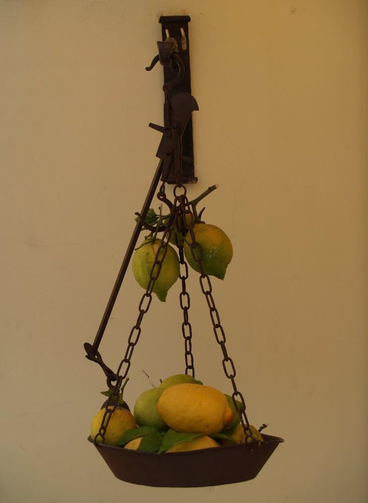 I limoni di Amalfi