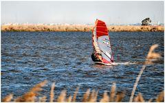 I love windsurf,