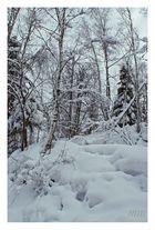 I nostri inverni