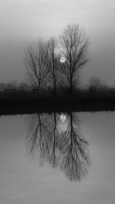 i riflessi della natura