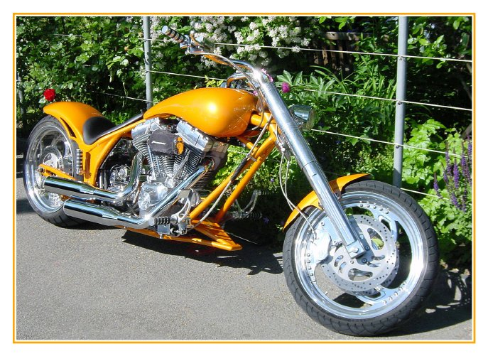 I want to ride my motorbike...