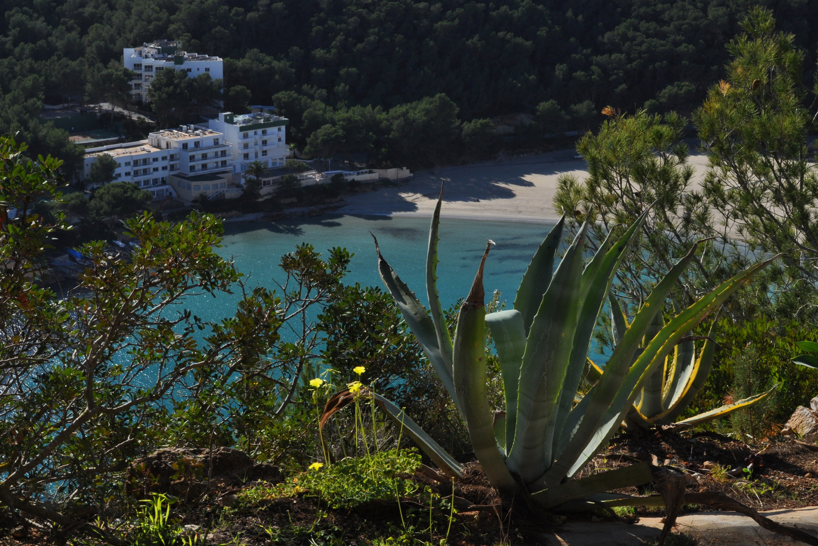 Ibiza: Cala Llonga