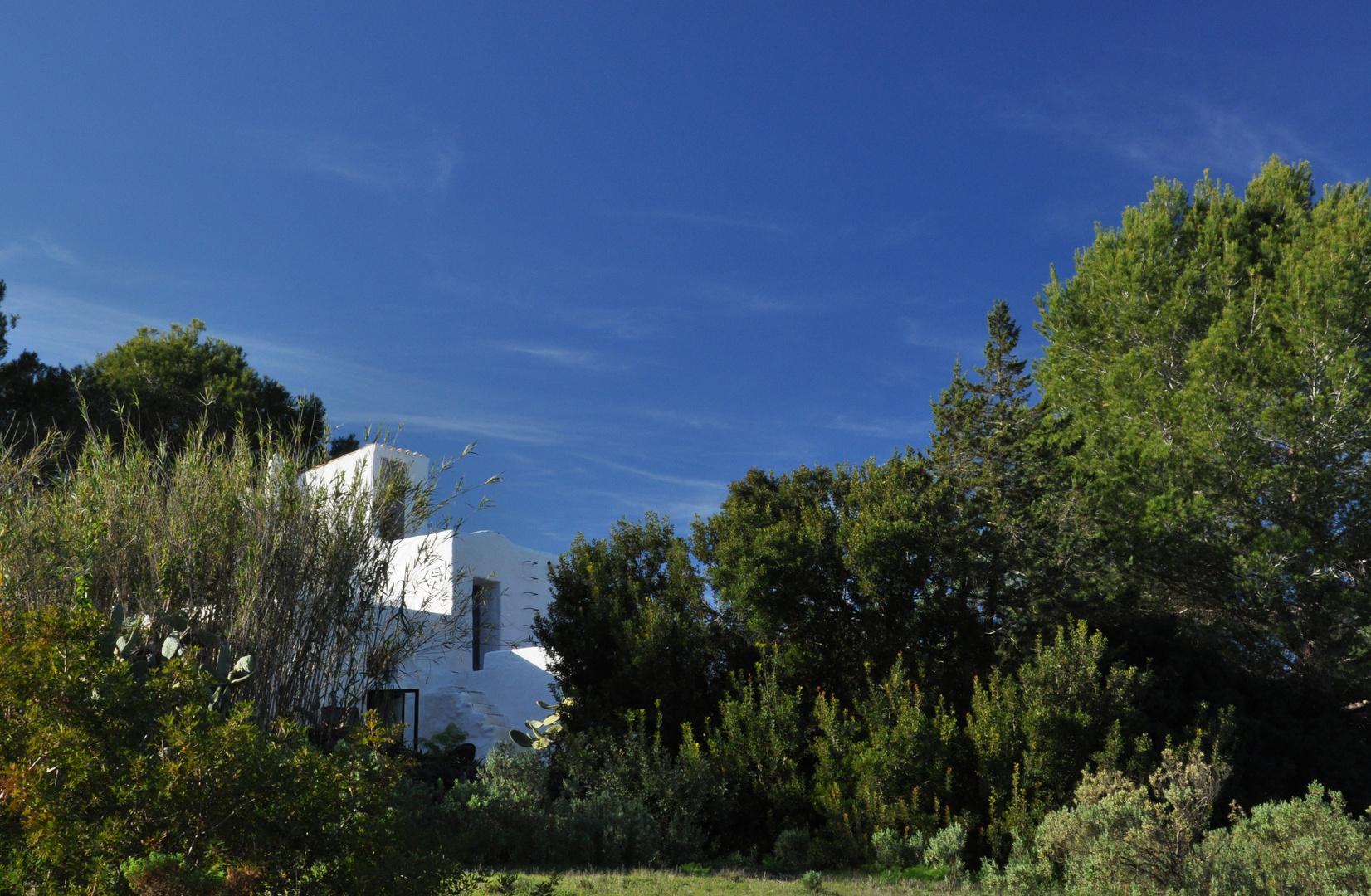 Ibiza: Finca rustica