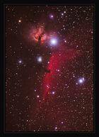 IC 431 / IC432 / Flammennebel (NGC2024) / NGC 2023 / Pferdekopf / IC434