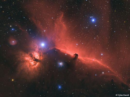IC 434 in Farbe