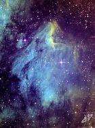 IC 5070 Pelikan Nebel