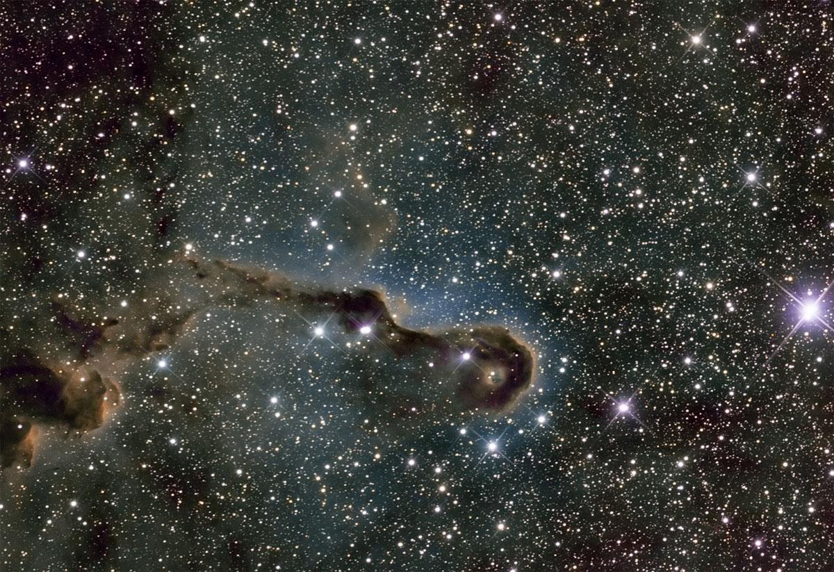 IC1396 Elefantenrussel