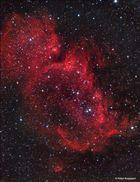 IC1848 im Sternbild Cassiopeia