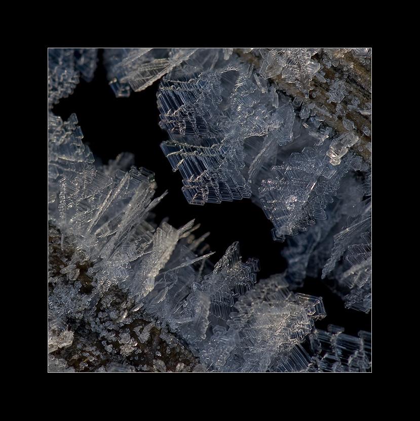 ice-world-fascination #3