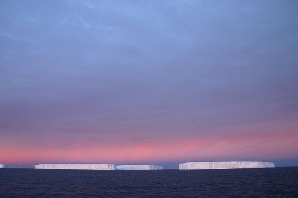 Icebergs au large de l'Antarctique