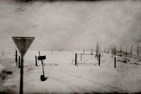 Iceland Farm in Snow #3