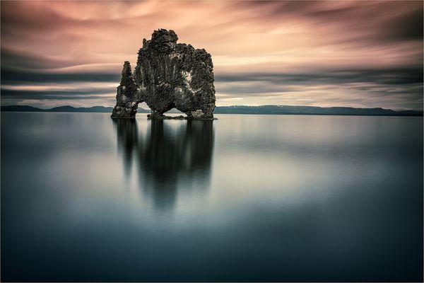 [  Iceland Nashorn  ]
