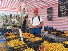 Ich am Viktualienmarkt im Schwammerlstand