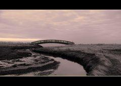 Ich baue Gerne Brücke… aber rüber gehen müsst Ihr!!!