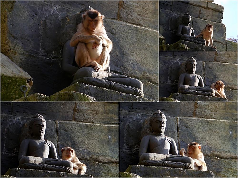 Ich bin die Herrin von Angkor Wat
