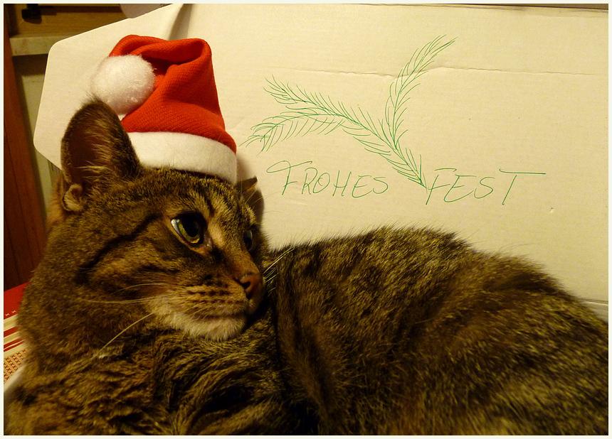 Ich bin Euer Geschenk !