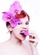 Ich ess Blumen...
