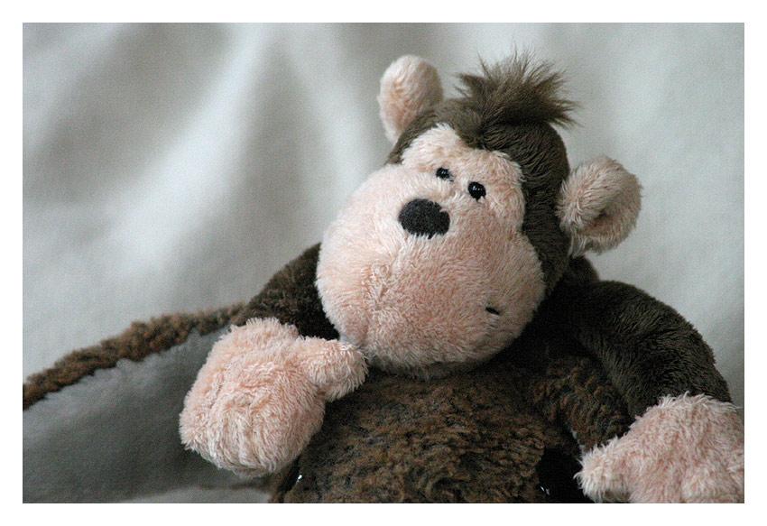 Ich glaub, mich laust der Affe!!!!!!!