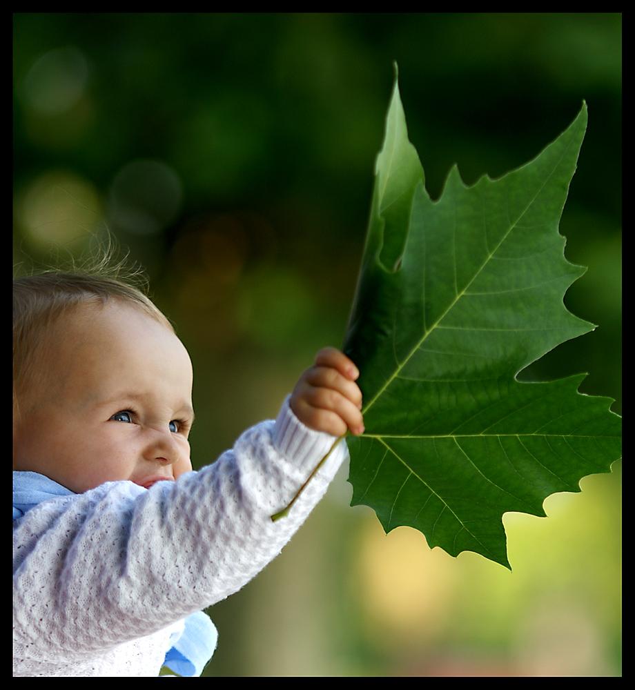 ich glaube ich will mal nach Kanada ;-)