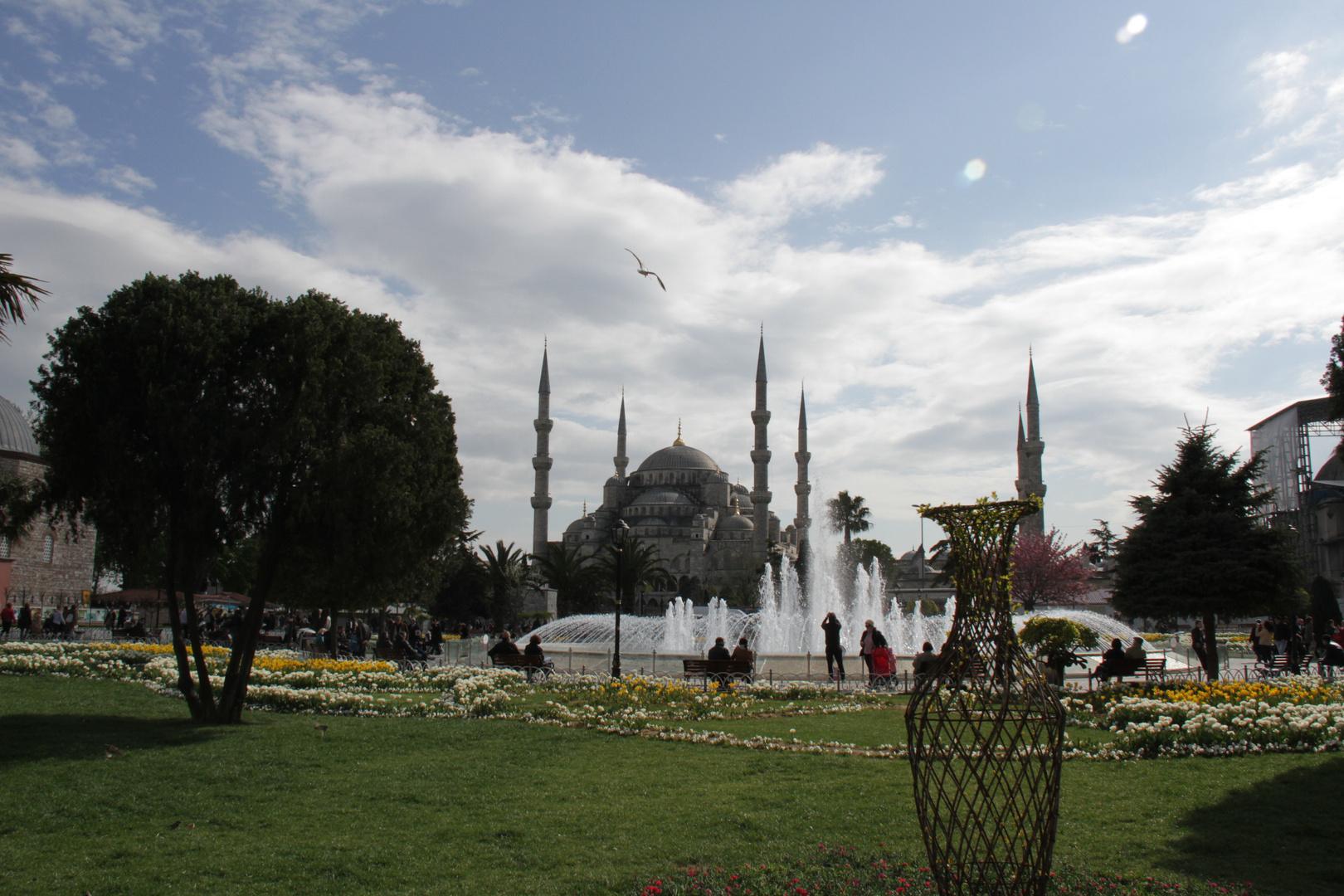 Ich hab mich verliebt in Istanbul.