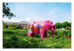 Ich hab 'nen pinkfarbenen Elefanten gesehen, Herr Wachtmeister ....
