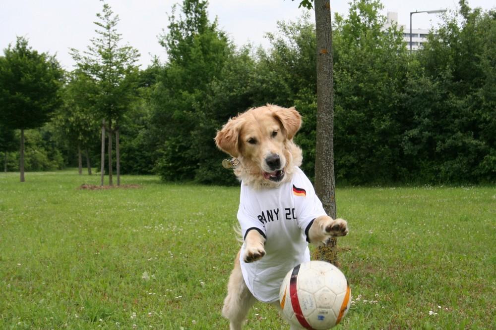 ich halt den ball......