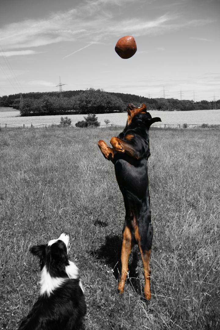 Ich hol dir den Ball vom Himmel