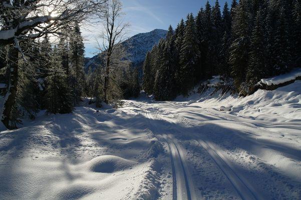 Ich lass euch nochmal frieren ;-) Ammerwald / Tirol 31. Dezember 2010