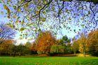 Ich liebe den Herbst...
