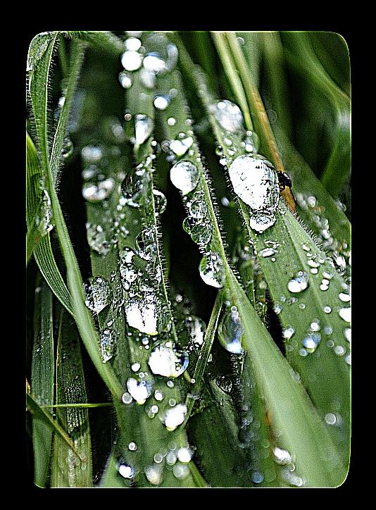 Ich liebe Regen ;)