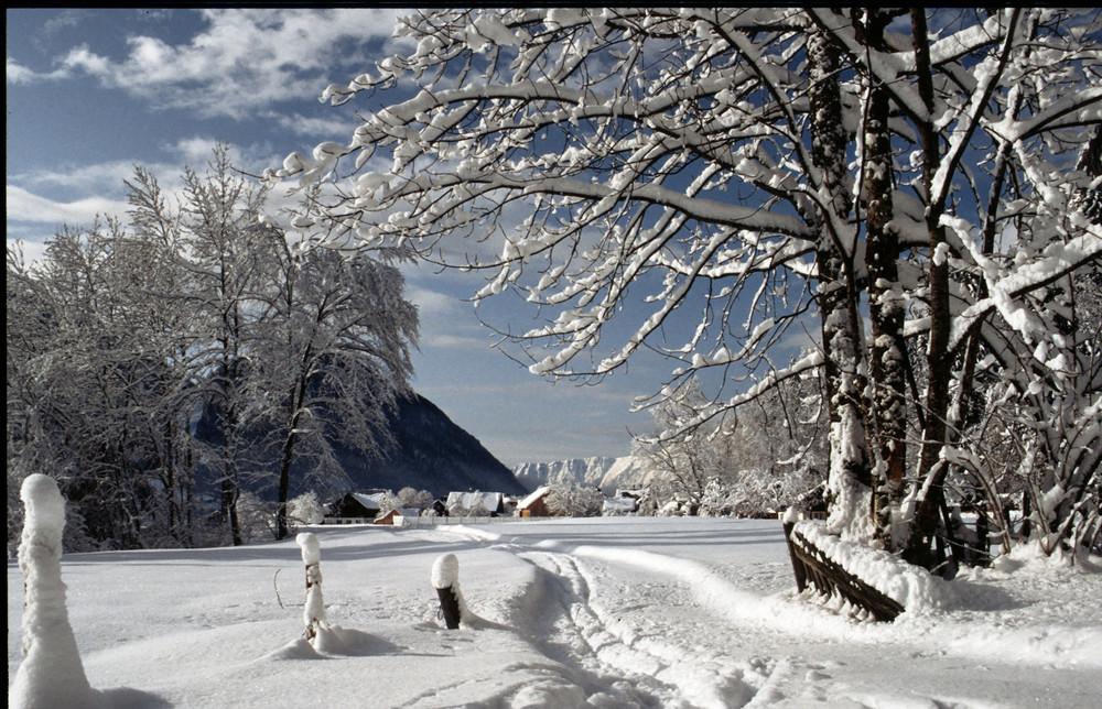 Ich mag ja den Winter