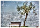 Ich mag zu fotografieren Bänke-Gardasee