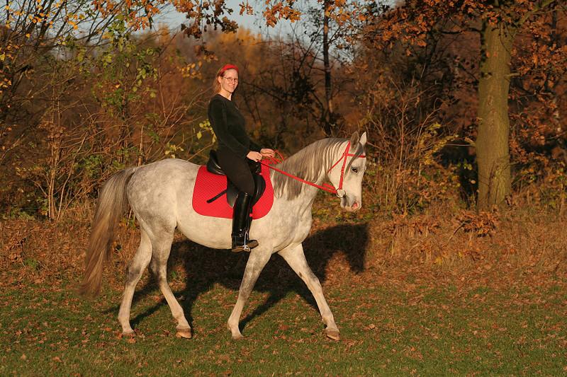 Ich mit meinem Pferd