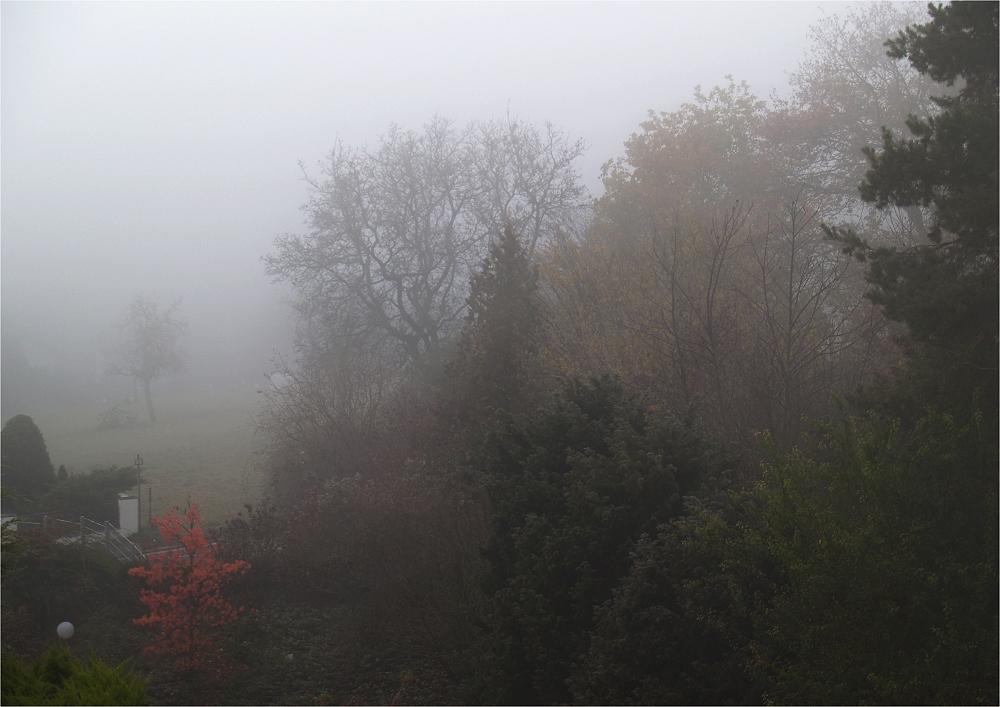 Ich möchte auch mal Nebel zeigen :-)