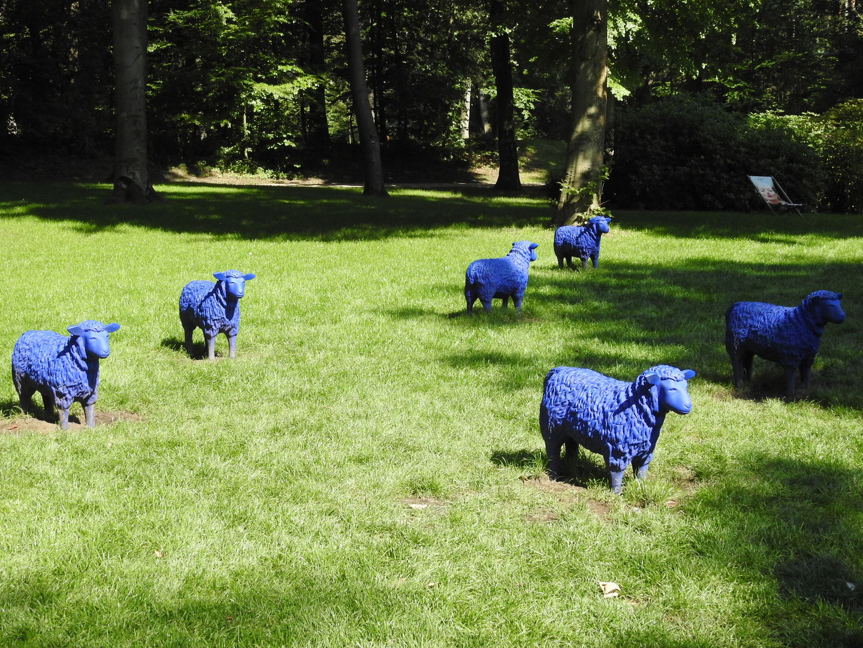 Ich sah nur blau, blau, blau....