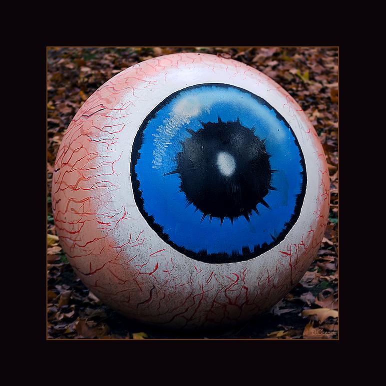Ich seh` Dich