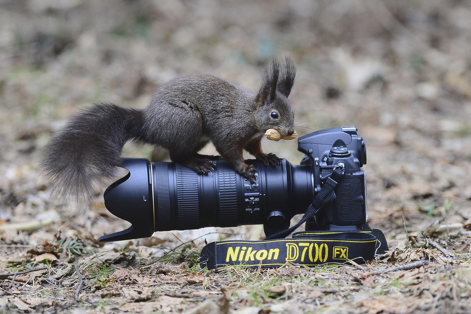 Ich steh auf Nikon!!!