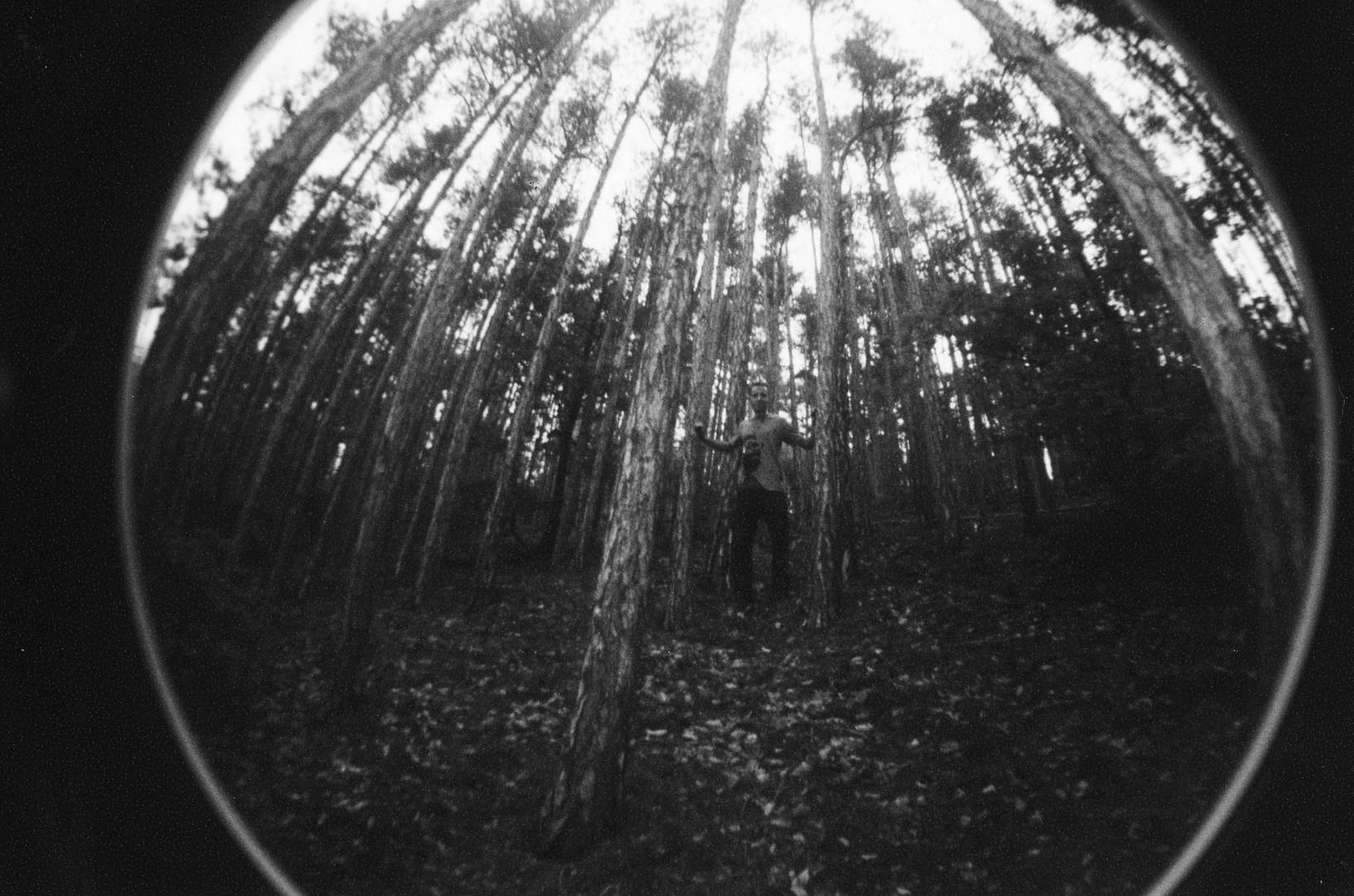 Ich steh im Wald