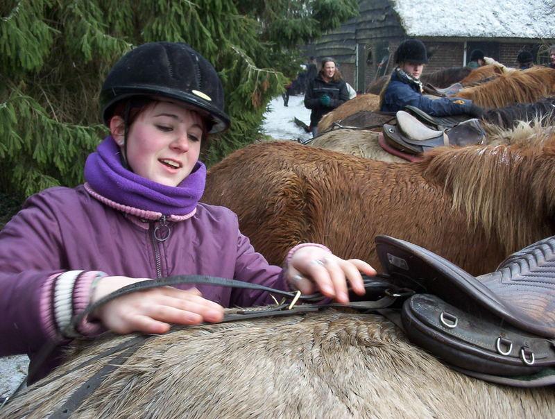 Ich und mein Pferd