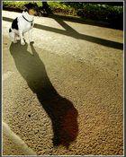 Ich und mein Schatten!