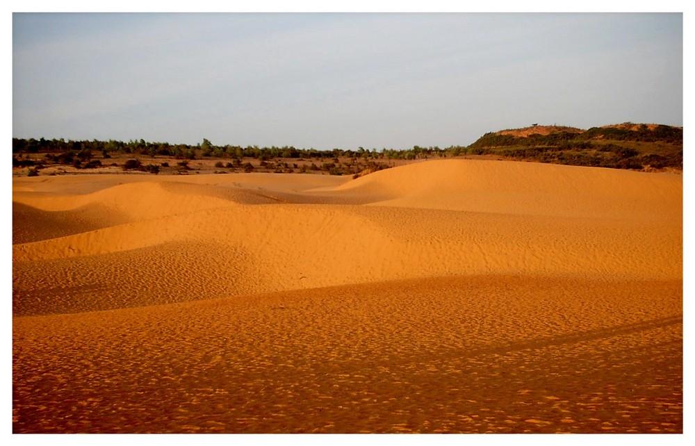Ich war auch in der Wüste