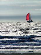 Ich will wieder an die Nordsee...
